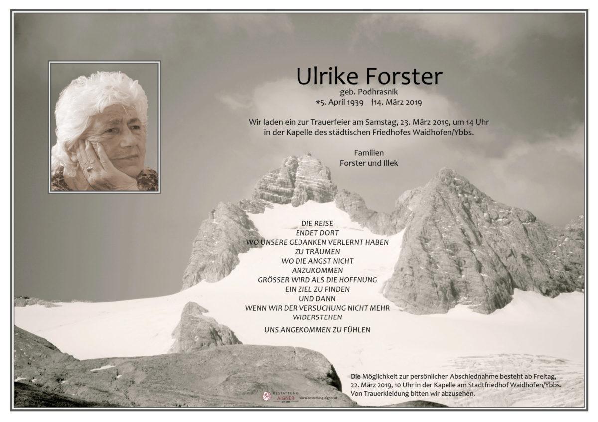 Ulrike Forster