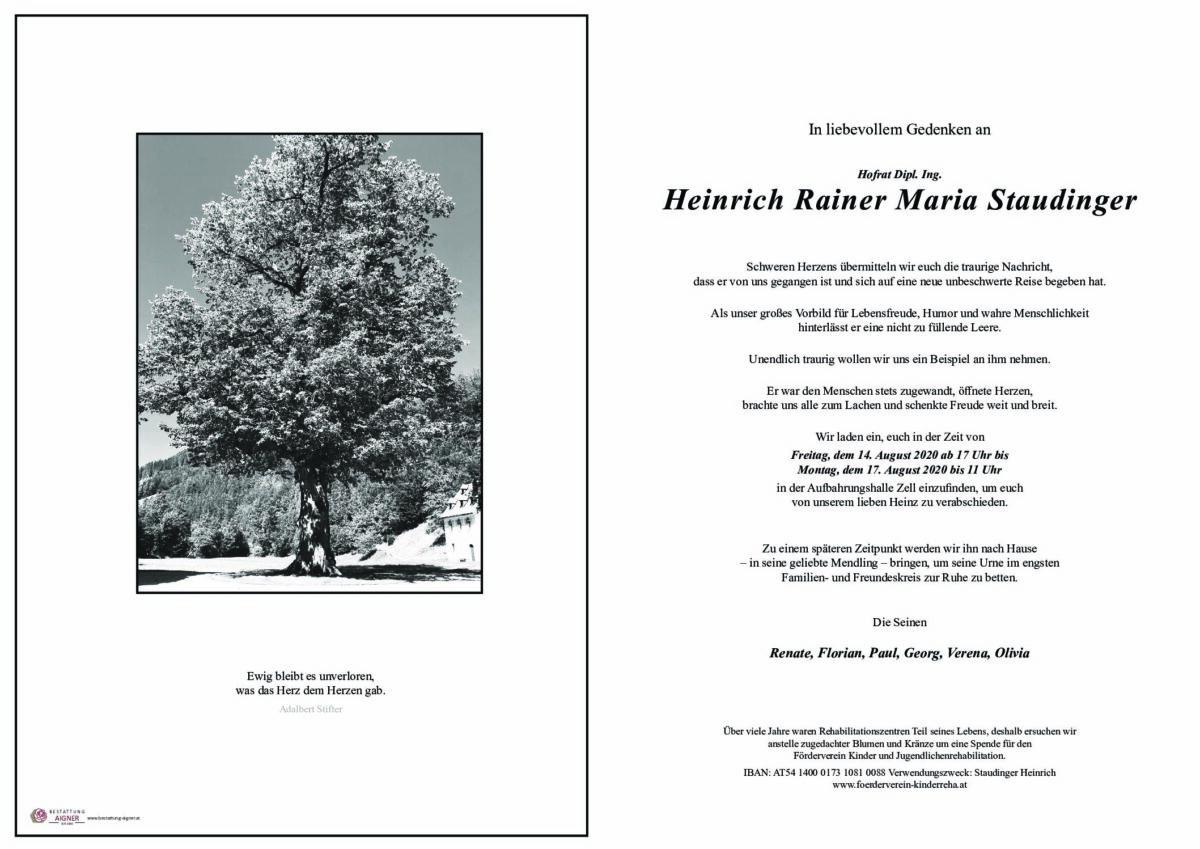 Hofrat Dipl. Ing. Heinrich Rainer Maria Staudinger